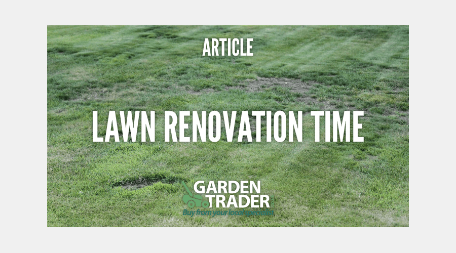 Lawn Renovation Time | Garden Trader