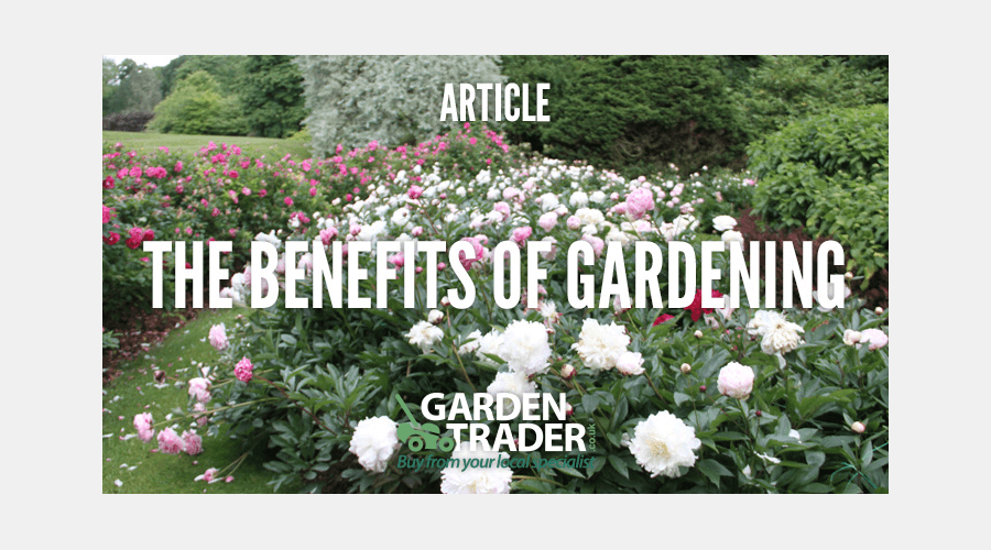 The benefits of gardening