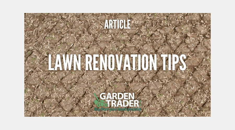 Lawn Renovations - Best Tips