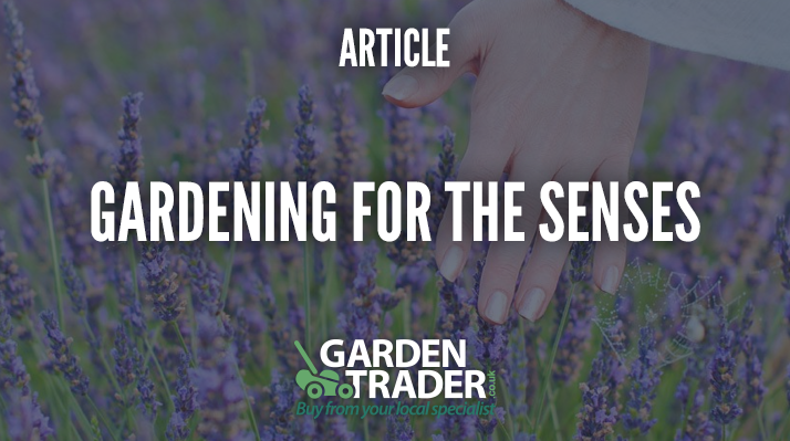 Gardening for the senses